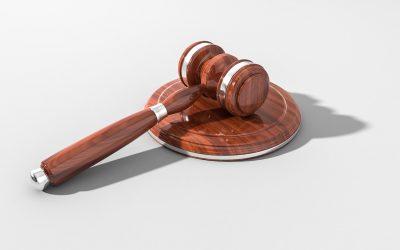 Czym się zajmuje prawo karne?